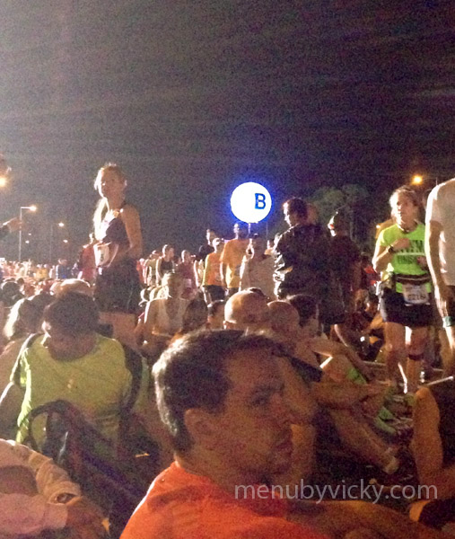 Walt Disney World 2013 Marathon - Corral B