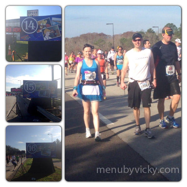 Walt Disney World 2013 Marathon - Miles 14 to 16